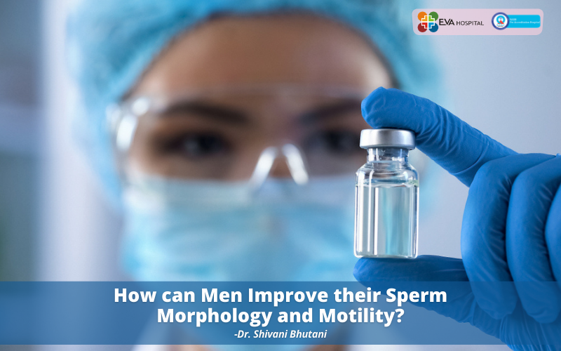 Sperm Morphology and Motility