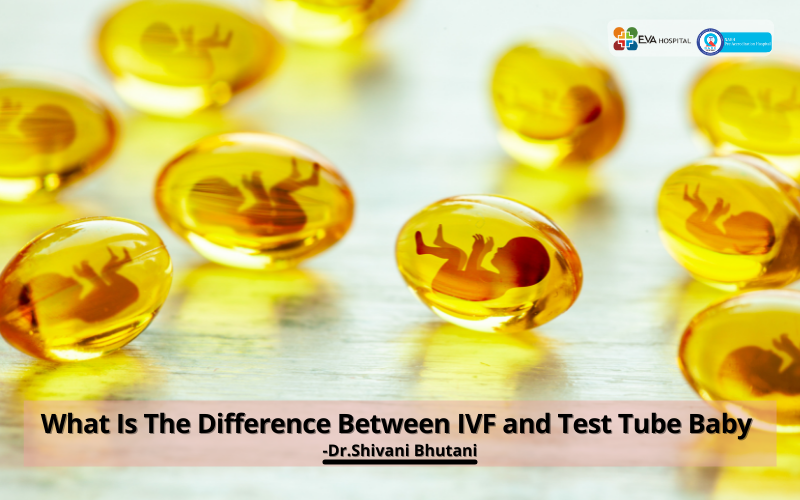 What is the difference between IVF and Test Tube Baby